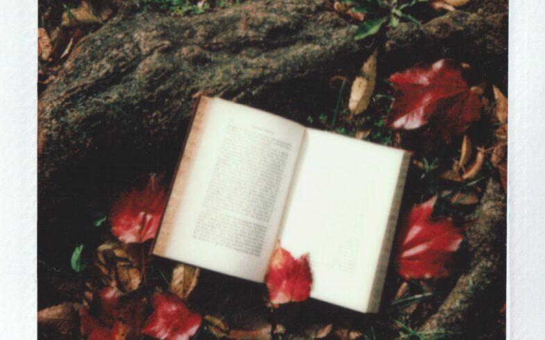 Spændende læsning til hus- og haveejeren